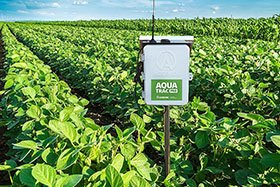 The Benefits of Irrigation Management and Scheduling