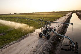 Linear Irrigation for Precision Ag